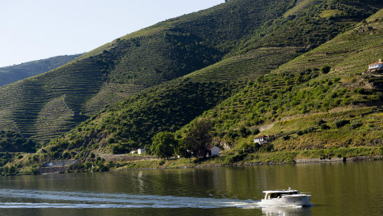 douro bike tour