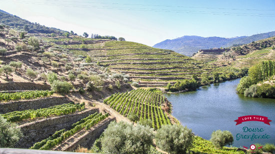IMG_0696_opt Cycling in Douro, Portugal: History, wine, and culture