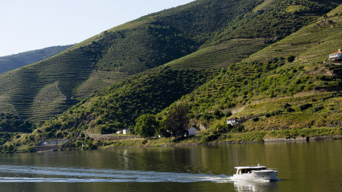 front_opt Cycling in Douro, Portugal: History, wine, and culture
