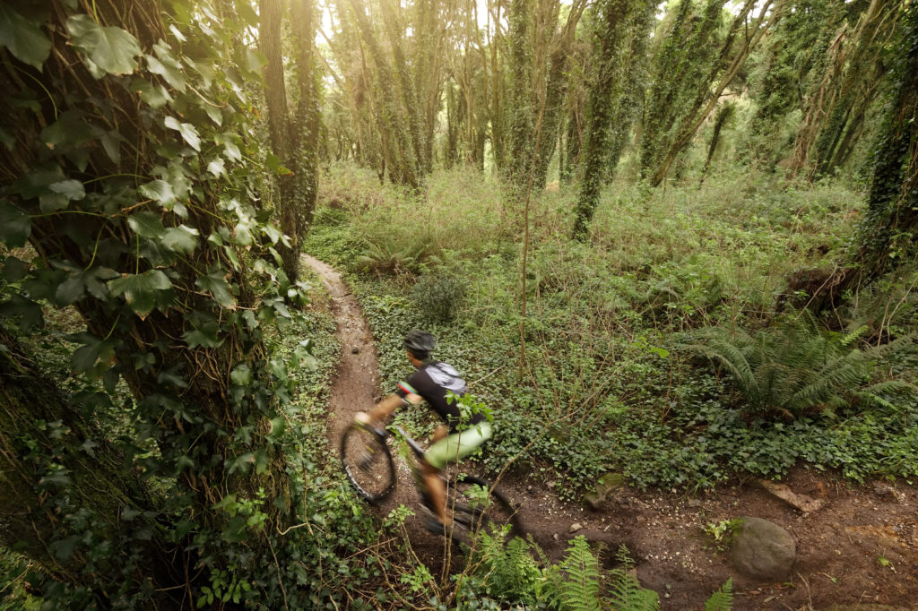 mountain-biking-portugal-sintra-trails