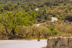 Bike Tour in Alentejo - Heritage and Wine Country - copy - copy