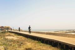 Bike Tour in the Portuguese Camino - By the Coast, from Porto - copy