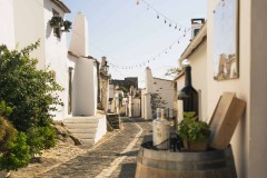 Bike Tour in Alentejo - Heritage and Wine Country