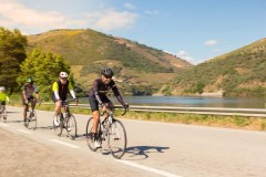 Full Day Bike Tour in Douro Valley