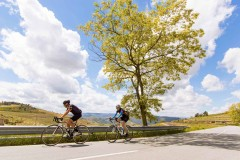 Bike Tour by the Douro River - Wine Country and International Park - copy - copy